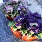 23-grabgestaltung-frankreich-grabbepflanzung-porzellanblumen